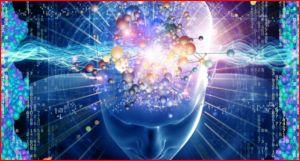 brain view access2