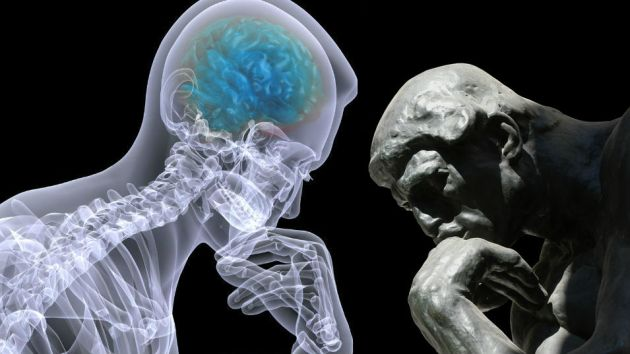 2 brains