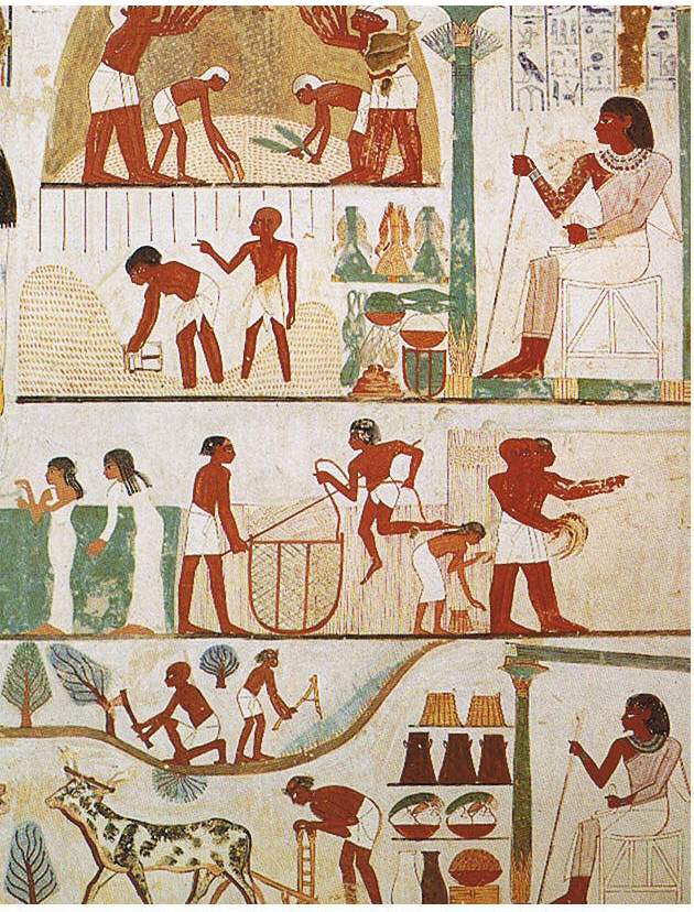 Farming scenes in the Tomb_of_Nakht