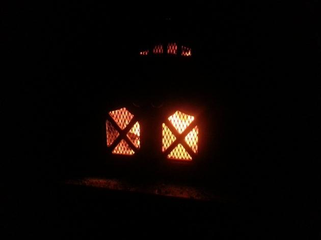 wood stove doors