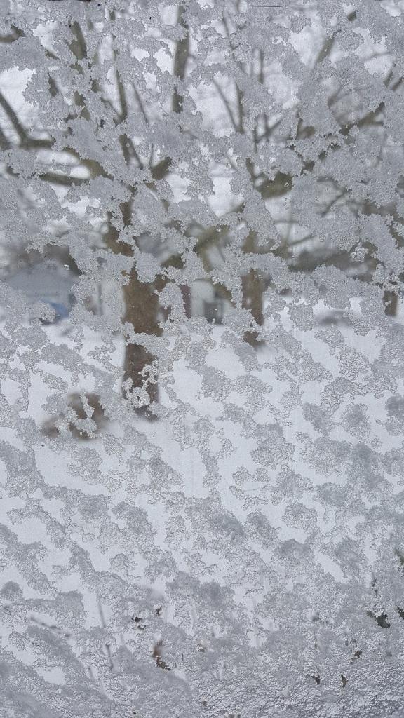 winter scene4a